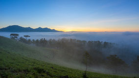 Fog over mountain and forest on sunrise at Da Lat, Vietnam Royalty Free Stock Photos