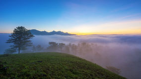 Fog over mountain and forest on sunrise at Da Lat, Vietnam Royalty Free Stock Image