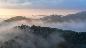 Fog over mountain and forest on sunrise at Da Lat, Vietnam Stock Image