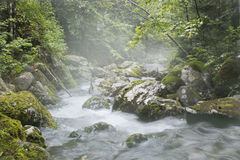 Fog over the mountain river Royalty Free Stock Photo