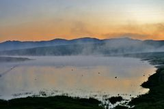 Fog over pond Stock Image