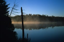 Fog over pond Stock Images