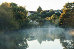 Fog over the pond at dawn Royalty Free Stock Images