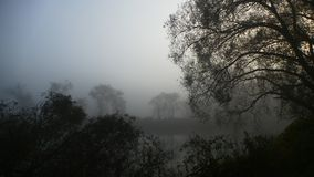 Fog over the pond. Early morning. stock photos