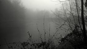 Fog over the pond Royalty Free Stock Photos