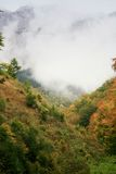 Fog over the ridge. Fog rising above the forest covering the ridge of Piatra Caraiului mountains Stock Photography