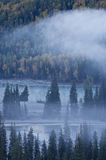 Fog over river & forest in autumn Royalty Free Stock Images