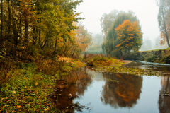Fog over river in forest in the autumn Stock Photography