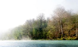 Fog over river in a forest in spring. Fog over river Drina in a forest royalty free stock images
