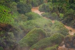 Fog over the river, Vietnam, Dalat Royalty Free Stock Image