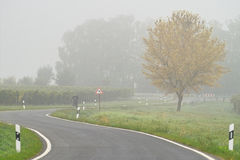 Fog over the road. Heavy fog over the road in wineyards, Germany Stock Photography