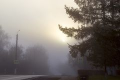 Fog over the road in the city. In the autumn morning Royalty Free Stock Images