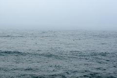 Fog over sea or ocean. Scenic view of fog or mist over sea or ocean royalty free stock photos