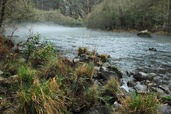 Fog over a silvered river. Spain Royalty Free Stock Photo