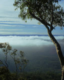 Fog over valley Royalty Free Stock Image
