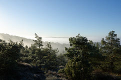 Fog over the valley in the early morning Stock Photography