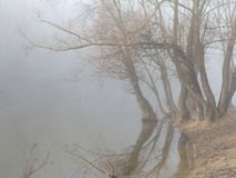 Fog over water in the spring in the early morning. Royalty Free Stock Photo
