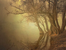 Fog over water in the spring in the early morning. Royalty Free Stock Photos