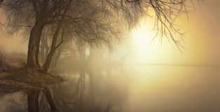 Fog over water in the spring in the early morning. Royalty Free Stock Image