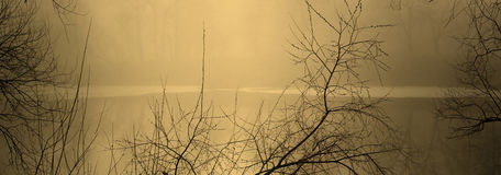 Fog over water in the spring in the early morning. Stock Images