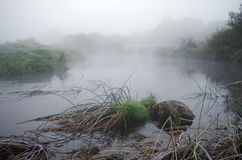 Fog over water. Summer fog over a river Royalty Free Stock Photography