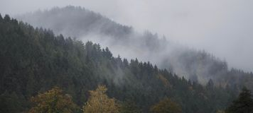 Fog over the hill. Fog over the wooded hills Stock Images