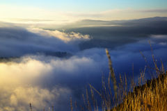 Fog over wooded mountains. In summer morning.  Galicia, Spain Stock Image