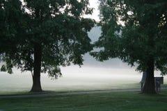 Fog In Park stock image