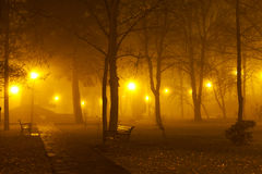 Fog in the park. The haunted alley - foggy evening in the park Stock Photo
