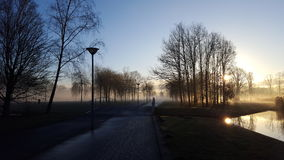 Fog in the park Stock Image