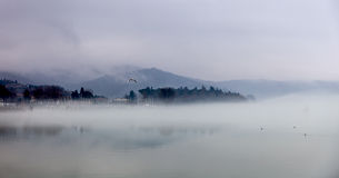 Fog in Passignano at Lake Trasimeno, Umbria, Italy Royalty Free Stock Photo
