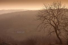 Fog provincial morning. Foggy morning in a provincial village Royalty Free Stock Images