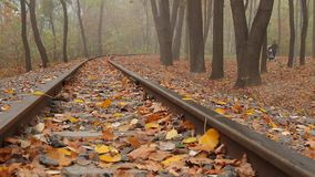 Fog on the railway stock video footage