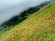 Fog after rain Royalty Free Stock Photography