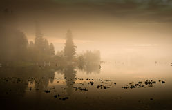 Fog and reflections on lake. A foggy sunset and beautiful reflections on a lake Royalty Free Stock Photo