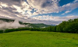 Fog rise above the forest. Behind the grassy meadow on hillside. beautiful nature springtime scenery in mountains Royalty Free Stock Photos