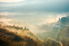 Fog rise above the forest on hill. Beautiful autumn scenery in mountain at sunrise Stock Image