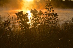 Fog rises from a lake during sunrise Stock Photo