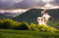 Fog rising above the forest on hillside. Beautiful mountainous landscape Royalty Free Stock Photo