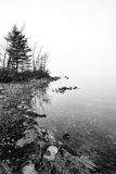 Fog rising off the Ottawa River - shoreline with diffused sunlight. Stock Photos