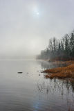 Fog rising off the Ottawa River - shoreline with diffused sunlight. Royalty Free Stock Photo