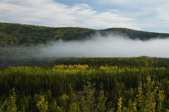 Fog rising up the tree covered valley as fall colors emerge, near Liard Hot Springs, BC Stock Photography