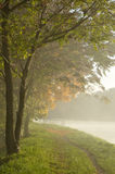 Fog by the River Stock Photos