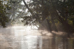 Fog river Royalty Free Stock Images