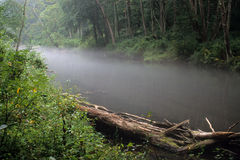 Fog on river Royalty Free Stock Photo