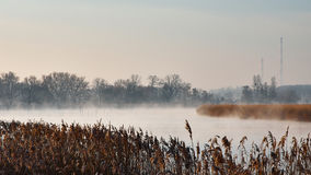 Fog on the river. In morning Royalty Free Stock Photo