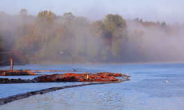 Fog on the River Stock Photography