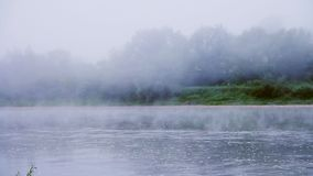 Fog on a river in summer morning stock video footage