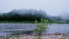 Fog on a river in summer morning. HD stock video footage