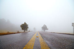 Fog on the road Royalty Free Stock Images